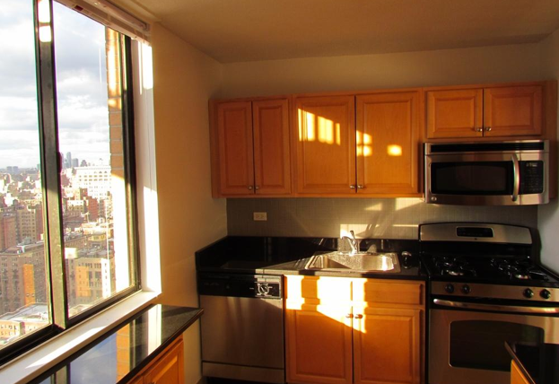 300 Mercer Kitchen - Rent Greenwich Village Apartments, NYC