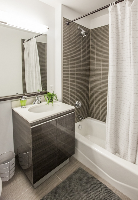 66 Rockwell Place Bathroom- apartments for rent in Brooklyn