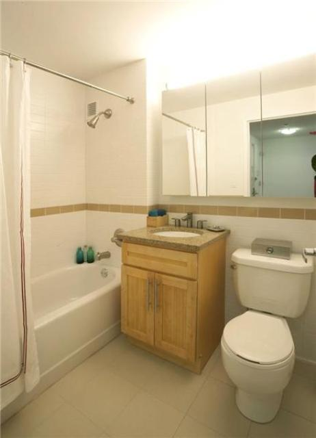 Rental Apartment at 245 East 124th Street Bathroom
