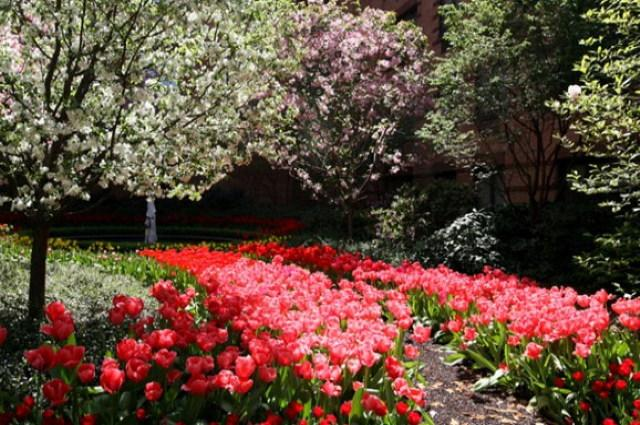 Hampton Court Garden - Manhattan Apartments for rent