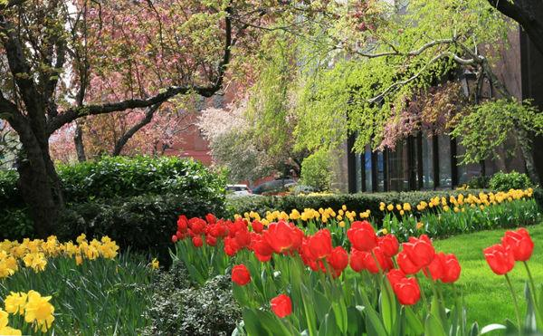 The Andover Garden - Upper East Side Apartment Rentals