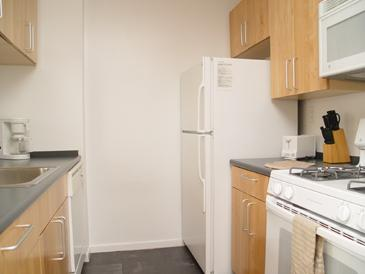 777 Sixth Avenue rental building Kitchen - NYC Flats