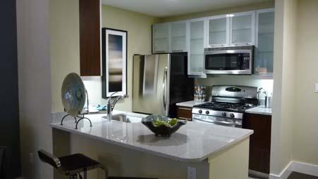 Echelon Chelsea Kitchen - Manhattan Apartments for Rent