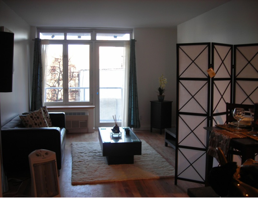 196 Stanton Street Living Room - NYC Rental Apartments