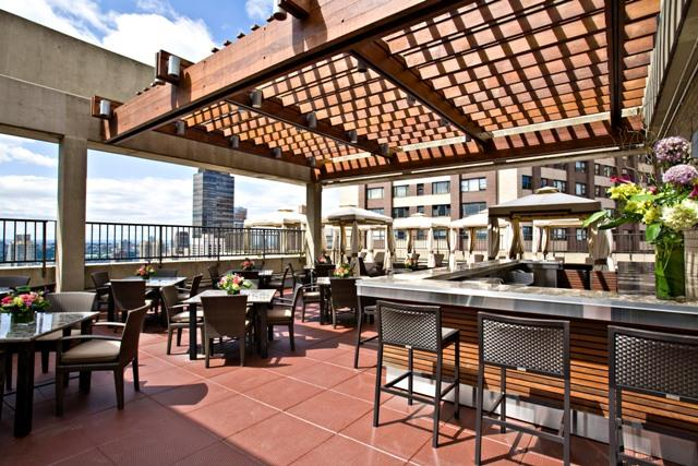 30 West 63rd Street  Roof Top Bar - NYC Rental Apartments