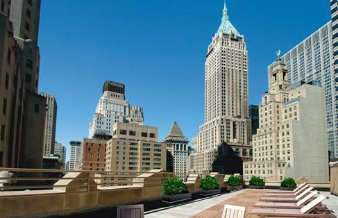 The Crest Roof Deck - 63 Wall Street apartments for rent