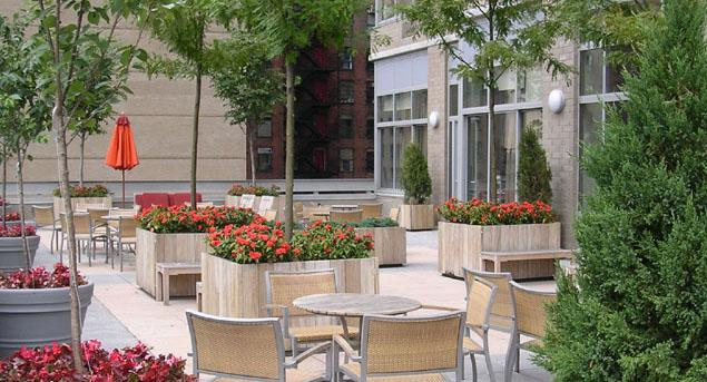 The Biltmore Terrace - 271 West 47th Street apartments for rent