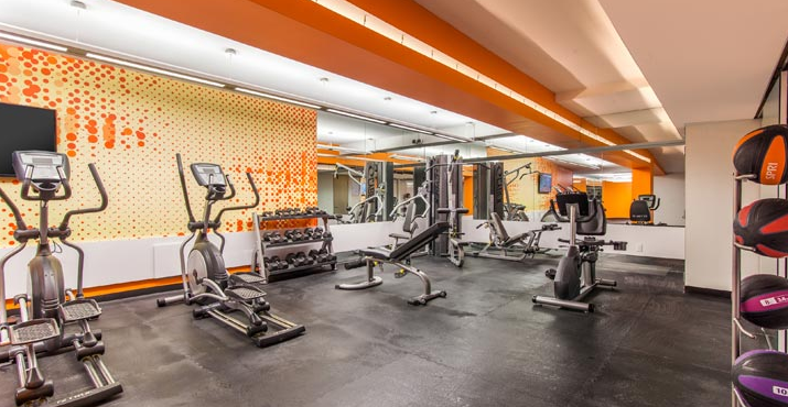 Fitness room- Landmark Park Slope- NYC condo for rent