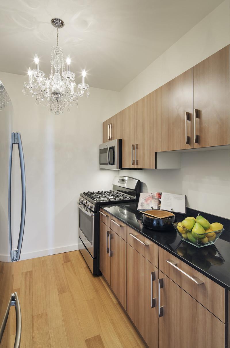 Open Kitchen at Ocean in Manhattan - Condos for rent
