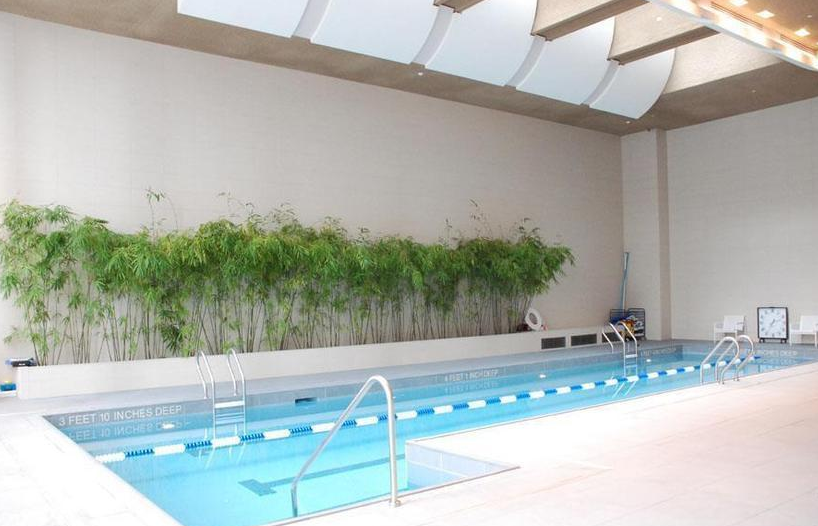 Pool at The Visionaire - Luxury Apartments for Rent in Downtown