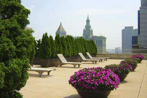 Rooftop Terrace at 53 Park Place in Manhattan - Apartments for rent