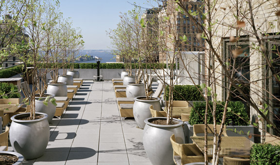 Rooftop Deck-88 Greenwich Street- condo for rent in NYC