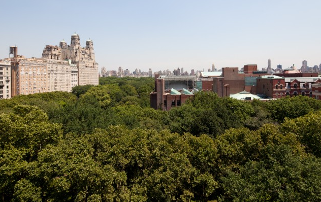The View at the Orleans- Condominiums for rent in NYC