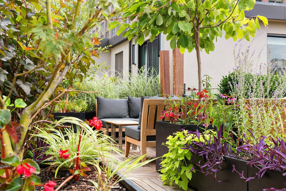 Landscape entry garden at 245 West 25th Street in NYC