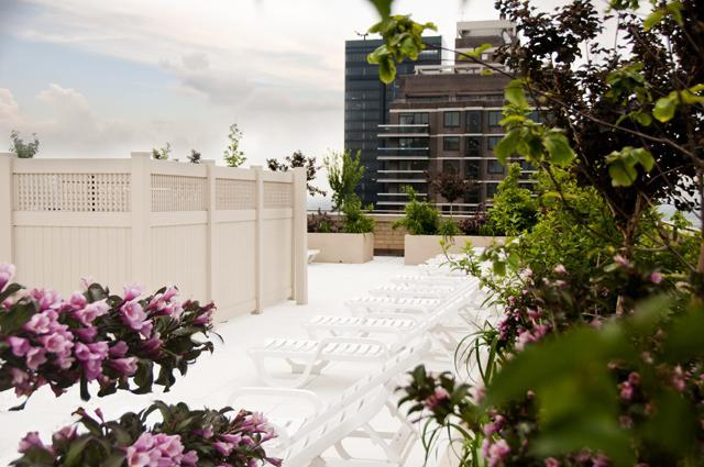 Condos for rent at The Somerset in Upper East Side - Rooftop Deck