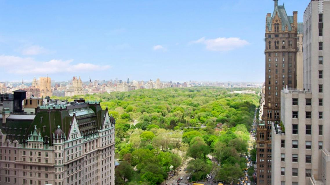 Park View from Trump Tower - 721 Fifth Avenue
