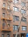 105-107 Saint Marks Place Manhattan Rentals in East Village