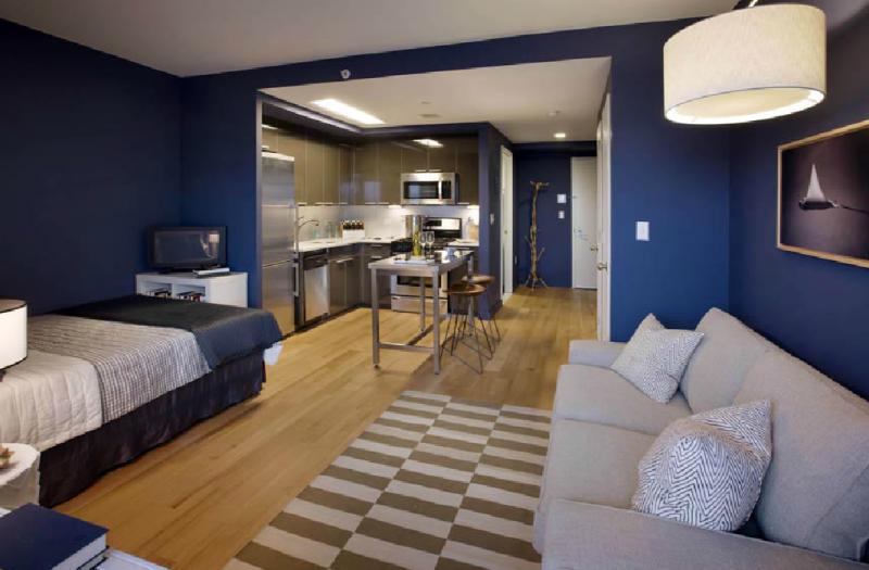 Studio - Packard Square North - LIC Rentals