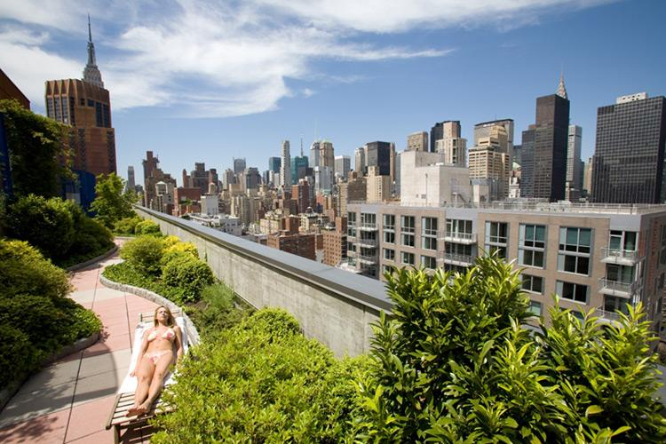 222 East 34th Street Rooftop Garden - Midtown East Rental Apartments