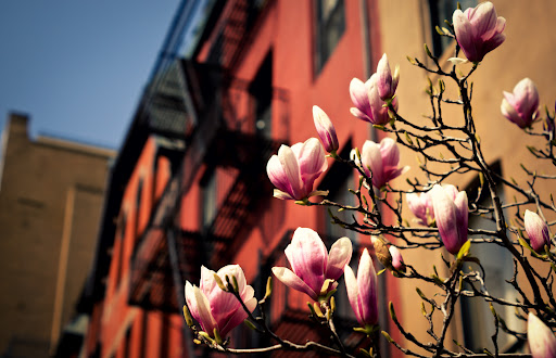 Spring came early for luxury rentals in Manhattan in 2012